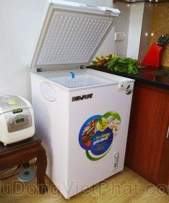 Tủ đông Hòa Phát 100l HCF 106S1N-(1)