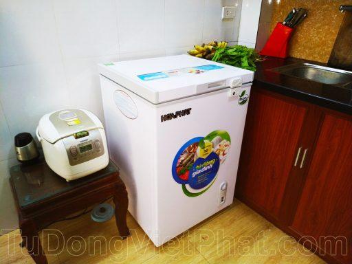 Tủ đông Hòa Phát 100l HCF 106S1N-(3)