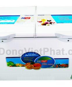 Mặt trước tủ đông Hòa Phát 245l HCF 606S2Đ2