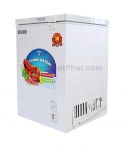 Tủ đông Hòa Phát 100L HCF-100S1Đ dàn đồng