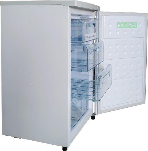 Ngăn đông của tủ đông đứng Hòa Phát HUF 300SR1